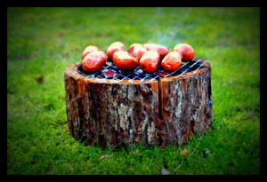 Eco-grill 2